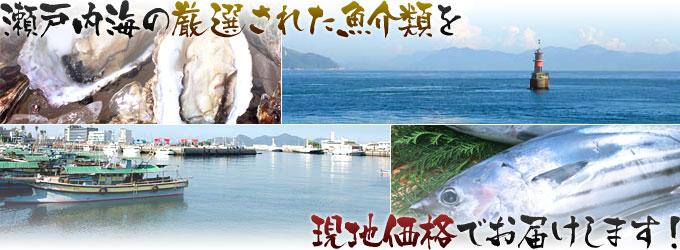 瀬戸内海の厳選された魚介類を現地価格でお届けします!